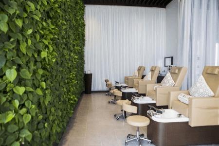Aveda - Beauty, Wellness, Environment